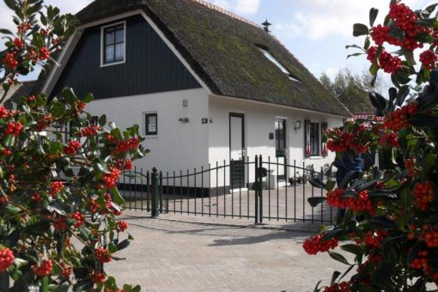 Villa Schaut